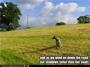 and as we wind on down the road, our shadows taller than our souls