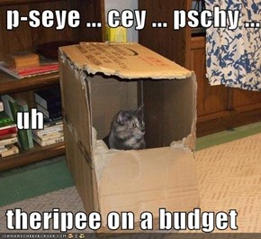 p-seye ... cey ... pschy ...    uh  theripee on a budget