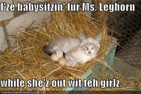 I'ze babysitzin' fur Ms. Leghorn  while she'z out wit teh girlz.