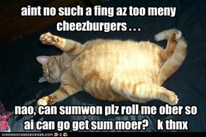 aint no such a fing az too meny cheezburgers . . .