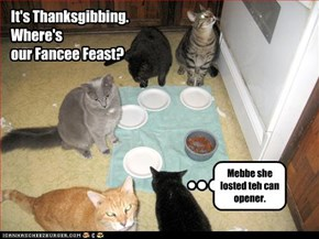 Mebbe she losted teh can opener.