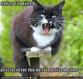 dallas fan kitteh  practicin for the next televised game