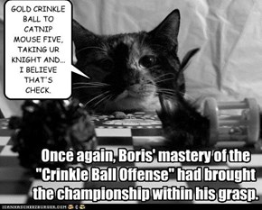 "Once again, Boris' mastery of the ""Crinkle Ball Offense"" had brought the championship within his grasp."