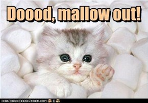 Doood, mallow out!