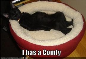 I has a Comfy