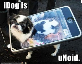 iDog is                                      uNoid.