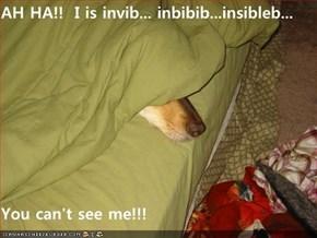 AH HA!!  I is invib... inbibib...insibleb...  You can't see me!!!