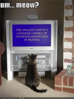 um... meow?