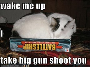 wake me up  i take big gun shoot you