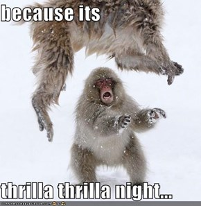 because its   thrilla thrilla night...