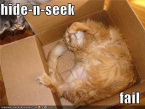 hide-n-seek  fail