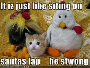 It iz just like siting on  santas lap     be stwong
