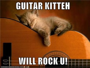 GUITAR KITTEH  WILL ROCK U!