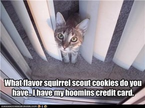What flavor squirrel scout cookies do you have.. I have my hoomins credit card.