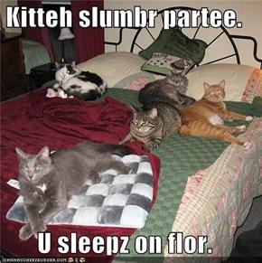 Kitteh slumbr partee.  U sleepz on flor.