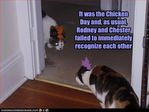 It was the Chicken Day and, as usual, Rodney and Chester failed to immediately recognize each other