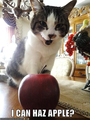 I CAN HAZ APPLE?