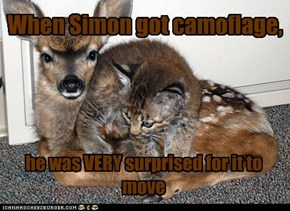 When Simon got camoflage,