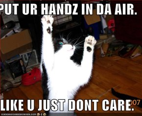 PUT UR HANDZ IN DA AIR.  LIKE U JUST DONT CARE.