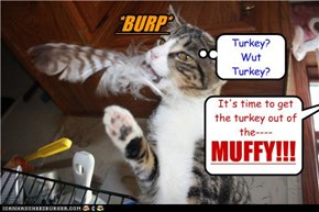 Happy Thanksgiving to all of my cheezfriends! (and hopefuly the cat won't beat you to the turkey! lol)