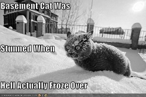 Basement Cat Was Stunned When Hell Actually Froze Over