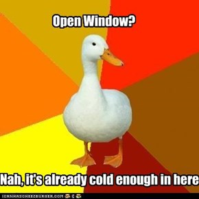 ducks like to keep their windows closed