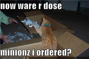 now ware r dose  minionz i ordered?