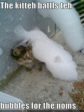 The kitteh battls teh  bubbles for the noms