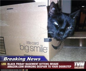 Breaking News - BLACK FRIDAY BASEMENT KITTEHS INVADE AMAZON.COM BRINGING DESPAIR TO YOUR DOORSTEP