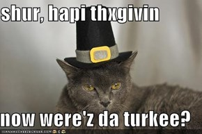 shur, hapi thxgivin  now were'z da turkee?