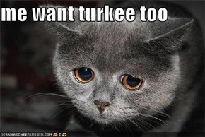 me want turkee too
