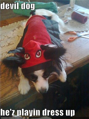 devil dog  he'z playin dress up