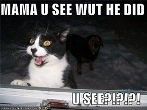 MAMA U SEE WUT HE DID  U SEE?!?!?!