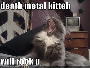 death metal kitteh  will rock u