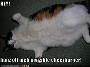 HEY!  hanz off meh invizible cheezburger!