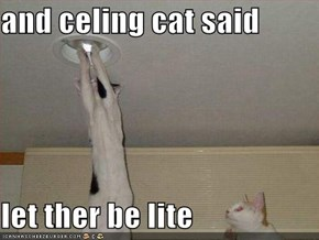 and celing cat said  let ther be lite