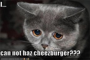 I...  can not haz cheezburger???