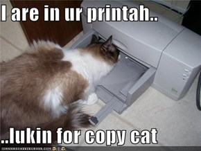 I are in ur printah..  ..lukin for copy cat