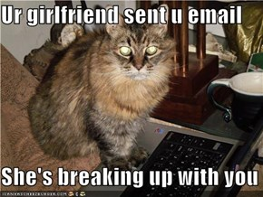 Ur girlfriend sent u email  She's breaking up with you