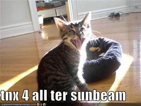 tnx 4 all ter sunbeam