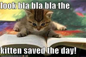 look bla bla bla the  kitten saved the day!