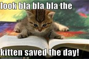 look bla bla bla the  kitten saved the day!