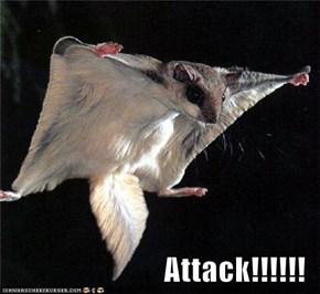 Attack!!!!!!