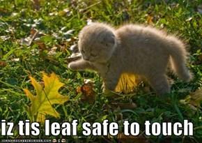 iz tis leaf safe to touch