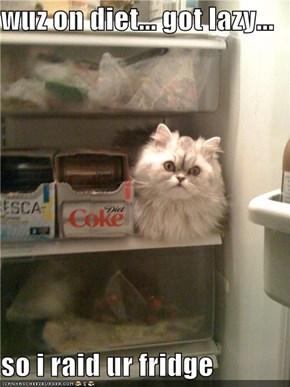wuz on diet... got lazy...  so i raid ur fridge