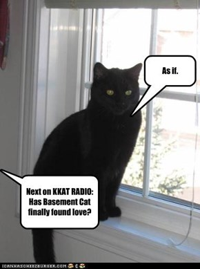 Next on KKAT RADIO: Has Basement Cat finally found love?