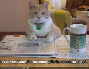For the last time, I'm not done with the crosswords yet.