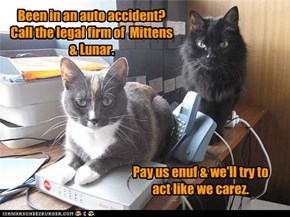 Been in an auto accident?  Call the legal firm of  Mittens & Lunar.