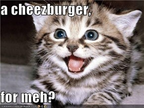 a cheezburger,  for meh?