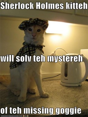 Sherlock Holmes kitteh will solv teh mystereh of teh missing goggie